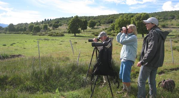 Birding-Patagonia1