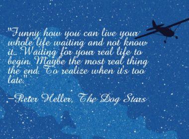 The Dog Stars